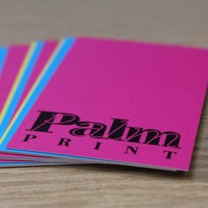 Bournemouth Business Services: Palm Print