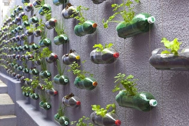 Perfect idea to turn your urban Bournemouth garden into a colourful space